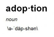 The Definition of Adoption